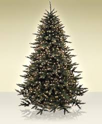 the telluride spruce prelit artificial trees treetime