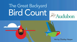 Audubon Backyard Bird Count by Audubon Backyard Bird Count Icon On Birds With The Christmas