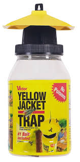 victor poison free victor poison free yellow jacket flying insect trap model bm362