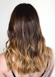 hair styles brown on botton and blond on top pictures of it 100 dark hair colors black brown red dark blonde shades