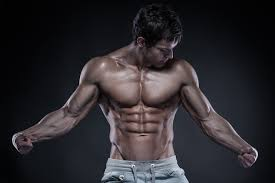 german volume training build mass and strength fast jacked factory