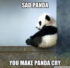 Panda Meme - 20 crazy adorable sad panda memes sayingimages com