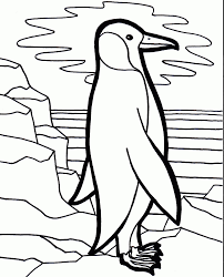 coloring now blog archive bird coloring pages