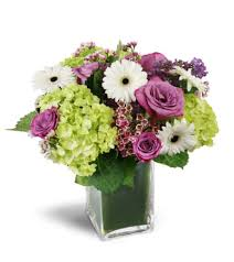 elkton florist sparking elkton md florist