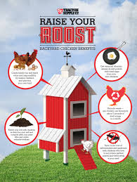Can You Have Chickens In Your Backyard Tractor Supply Welcomes Gardeners To Backyard Chicken Movement