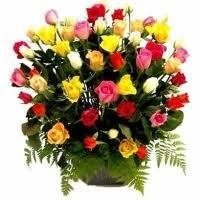Multi Colored Roses Filgiftshop Multi Colored Roses Filgiftshop