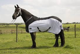 Outdoor Rugs For Horses Blankets Luba Horseblankets