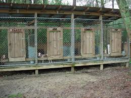 cheap hunting cabin ideas 15 best dogs images on pinterest dog pen dog kennels and kennel