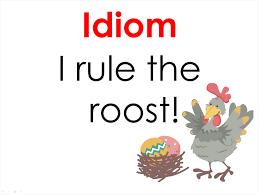 idioms hooty s homeroom