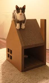 Outdoor Cat Condo Plans by 154 Best Cool Cat Condos Images On Pinterest Cats Cat Condo And