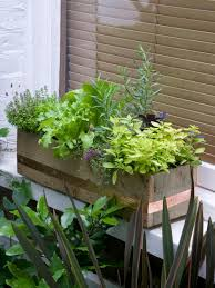 Kitchen Garden Window Ideas by Making And Planting A Windowbox Hgtv