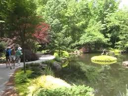 Georgia Botanical Garden by Gibbs Botanic Gardens Ball Ground Georgia Youtube