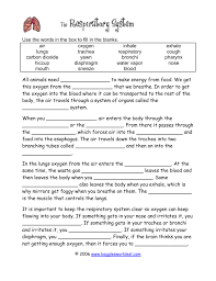 anatomy of the respiratory system review sheet images learn
