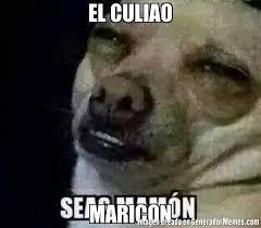 Maricon Meme - el culiao maricon meme de seas mamon imagenes memes generadormemes