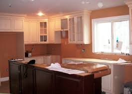 Kitchen Wall Paint Ideas Kitchen Kitchen Wall Colors With Dark Cabinets Regarding Provide