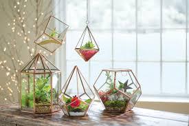 globe tabletop terrarium glass terrarium plant terrarium