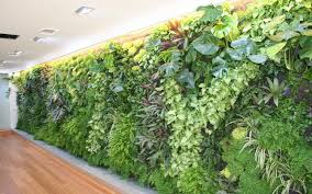 fashionable wall garden modest design do view in full size the