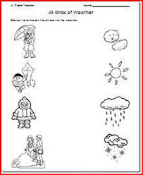 1st grade science worksheets free kristal project edu hash