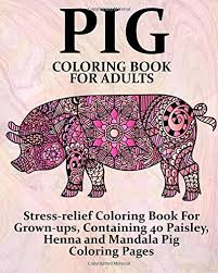 amazon pig coloring book adults stress relief coloring