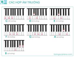 si e piano 14 hợp âm cơ bản và đủ dùng trên piano boi ngoc piano official