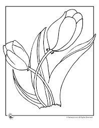 tulip flower coloring woo jr kids activities