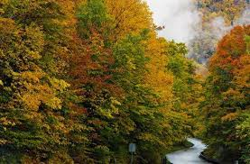 Vermont travel advice images 10 best fall foliage trips in the u s fodors travel guide jpg