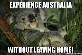 Australia Meme - experience australia without leaving home laid back koala make