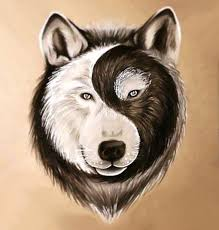 best yin yang wolf design wolf wolf