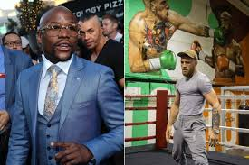 did mcgregor paint gym wall with mayweather knockout mma news