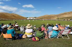 cricket and summer make perfect nz match tourism new zealand media