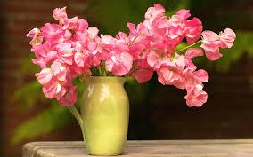 winter flowers in vase images vasette delivery vases wholesale