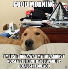 Good Morning Sunshine Meme - i has a hotdog good morning funny dog pictures dog memes