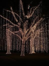 wondrous tree trunk lights on wrap outdoor led blue