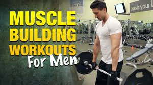 building workouts for how to get bigger arms shoulders