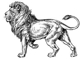 coloring page lion coloring page lion img 17373