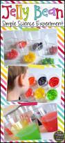 jelly bean simple science experiment free experiment page