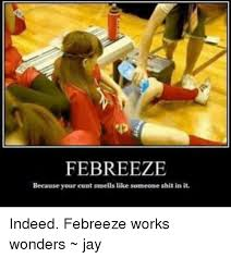Febreze Meme - febreeze because your cunt smells like someone shit in it indeed