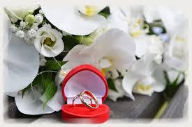 hochzeitstage spr che 17 hochzeitstag orchideenhochzeit geschenke sprüche