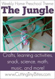 best 25 preschool jungle ideas on pinterest jungle preschool