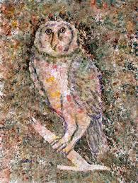 1626 best owl together images on pinterest owl artwork owls and