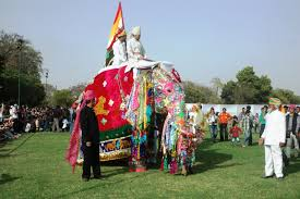 jaipur elephant festival coffee table elephant festival to be celebrated with traditional gaiety jaipur beat