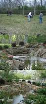 transformation by texas ponds and water features llc in austin