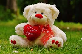 valentines day stuffed animals free images meadow sweet teddy textile