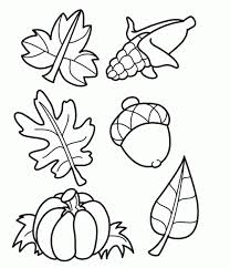 printable images of fruits to color coloring pages