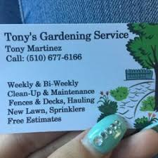 pro bay area landscaping landscaping hayward ca phone