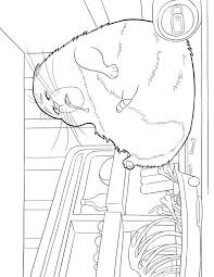 pets coloring page kids n fun com 29 coloring pages of secret life of pets
