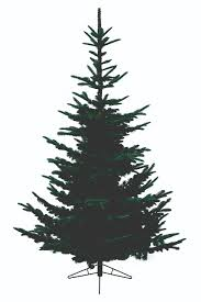 noble fir artificial tree lights decoration