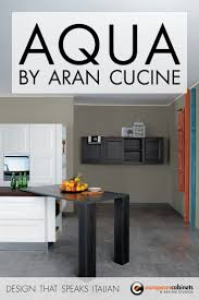 Contemporary Kitchen Cabinets by 33 Best Contemporary Kitchen Cabinets U0026 Projects Images On