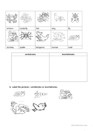 vertebrates and invertebrates worksheet free esl printable