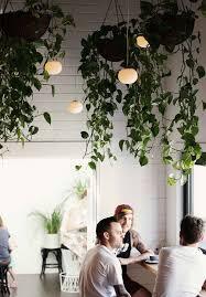 Indoor Garden Ideas - Interior garden design ideas